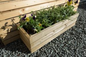 Contemporary Small Rectangular Planter